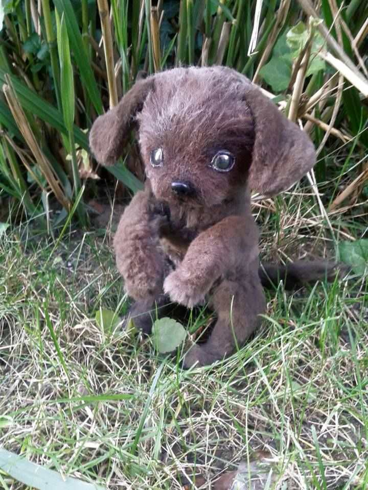 Baby labrador - handmade https://web.facebook.com/dreamplace.bears