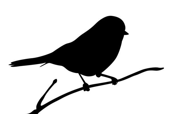 silhouette of a bird | silhouette finch: Adobe Illustrator CS5