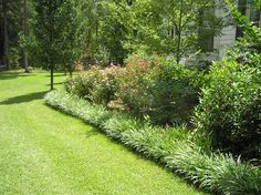 Monkey grass bordering- gives such clean lines!
