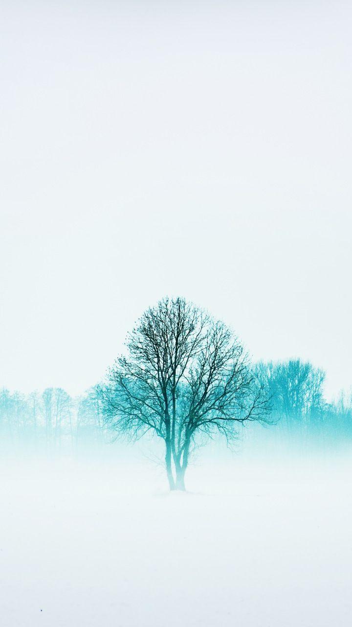 Winter Nature Trees Fog Minimal 720x1280 Wallpaper Nature