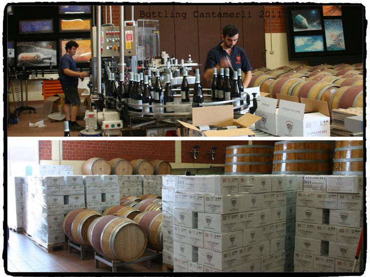 Bottling Cantamerli wine 2011: 60% Barbera 40% Cabernet