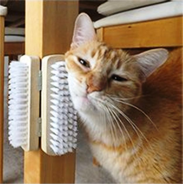 DIY Cat Self-Scratcher | 25 Adorable DIY Projects You and Your Pet Will Be Fascinated About