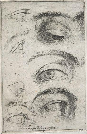 Jusepe de Ribera,  Studies of Eyes, c. 1622   Harvard Art Museums
