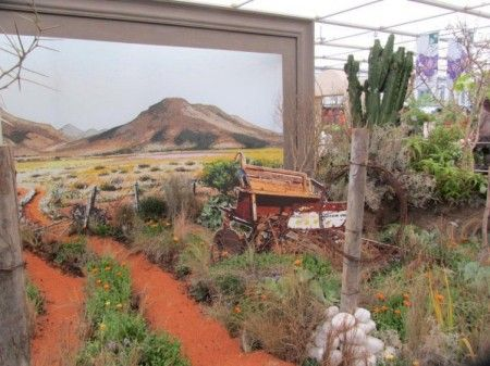 Chelsea Flower Show - South Africa wins gold