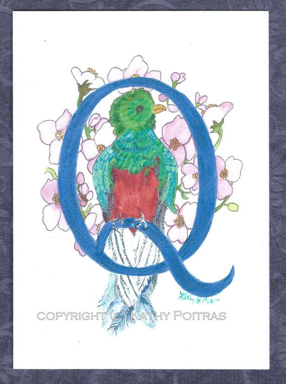 Q is for Quetzel.   personalized greeting card by KathyPoitrasArt
