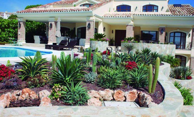 M s de 1000 im genes sobre cactus crasa y suculentas en for Jardines con poco mantenimiento