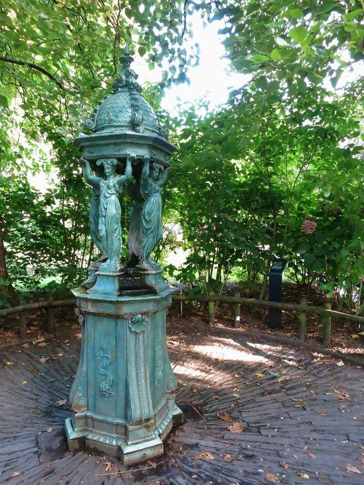Plus de 25 idées tendance dans la catégorie Jardin des plantes ...