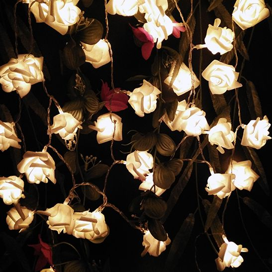 Waterproof Warm White Rose Flower Fairy String Lights 20 Roses Leds Battery Operated