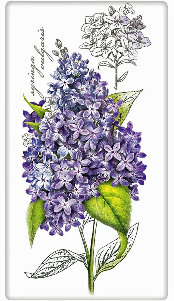 Botanical Lilac 100% Cotton Flour Sack Dish Towel Tea Towel