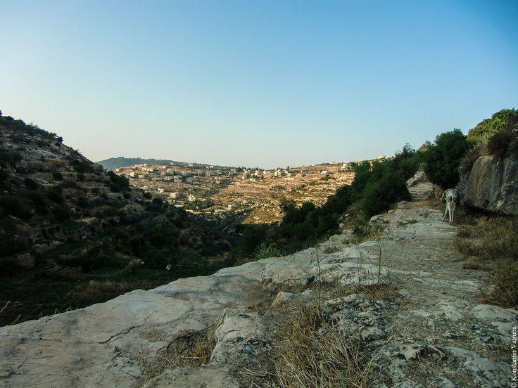На этом фото представлена тихая деревенская палестинская провинция недалеко от города Хусан. Израиль всего в нескольких километрах, но его тут не чувствуется.…
