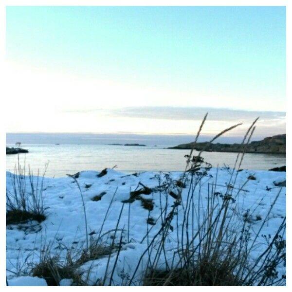 Vitt vintrigt och vackert! #öckerö