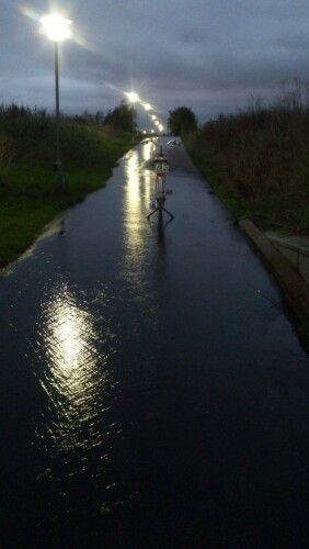It has been raining - a lot... A Diva rides upstream!