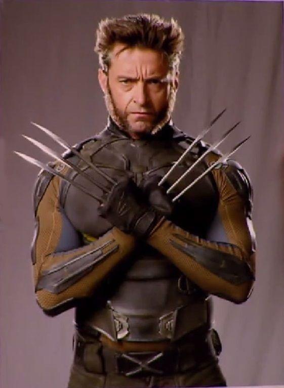 200 best X-Men (Heroes) images on Pinterest | X men ...  Hugh
