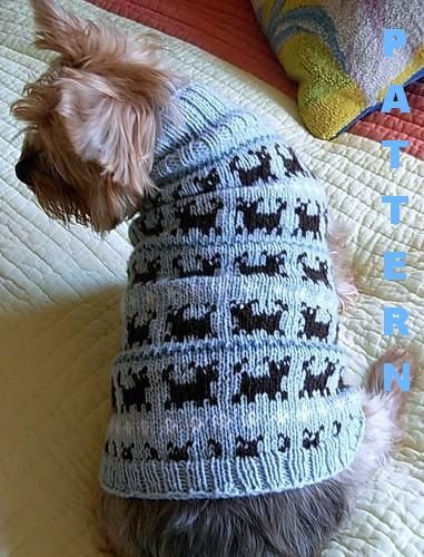 49 best Dog sweaters images on Pinterest   Stricken, Cute things ...