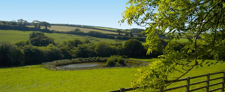 Facilities at Poltarrow Farm Cottages and B&B including Indoor Pool, Sports Hall, Fishing and Free Wi-Fi www.poltarrow.co.uk