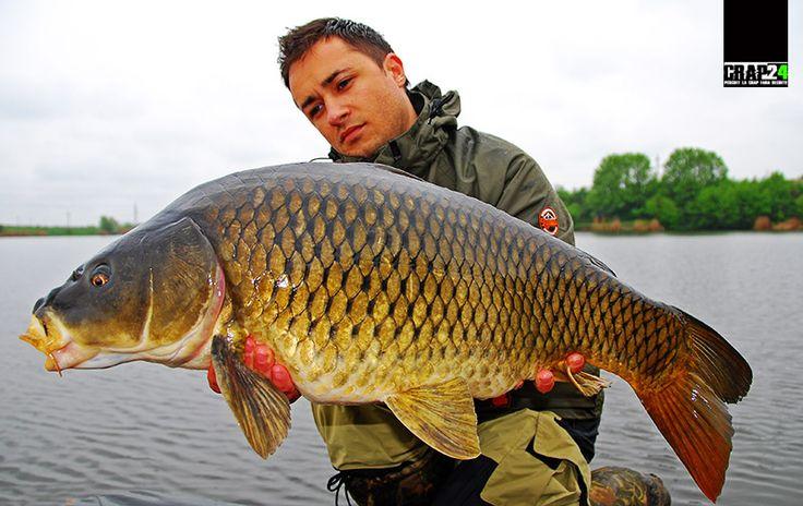 Unele dintre momelile preferate de foarte mulți pescari pentru pescuitul la crap în perioada rece sunt chiar…  Detalii și FOTO AICI >>> http://www.crap24.ro/?p=5476