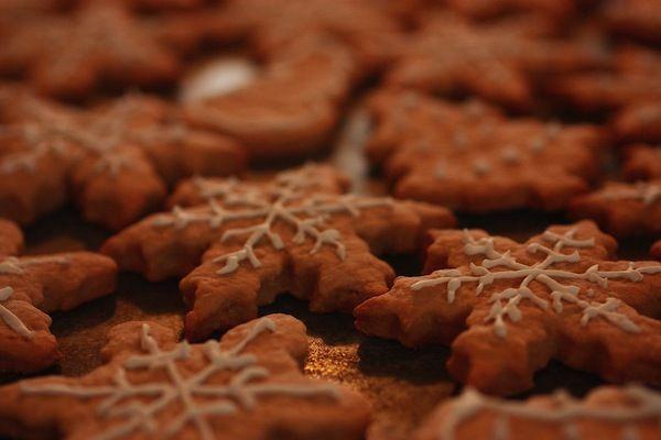 Ingredienti per circa 60 pezzi: 700gr farina 175gr zucchero di canna 175gr burro morbido 60gr miele 3 tuorli 3 cucchiaini zenzero in polvere 3 cucchiaini cacao 1 cucchiaino lievito per dolci 150ml latte
