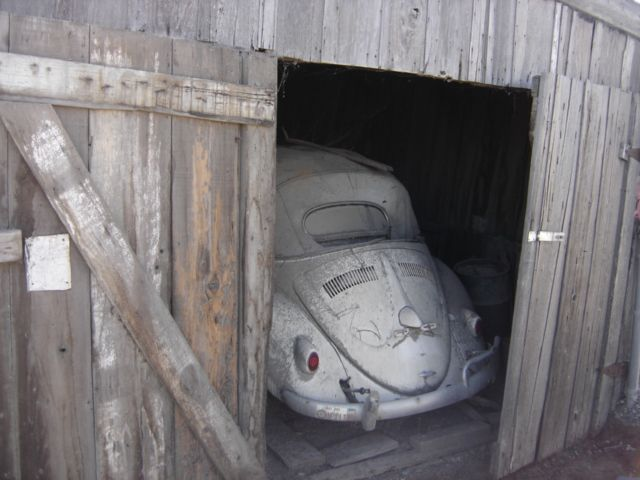 Barn find!: Vee Dub, Vw Beetles, Dreams, Vw Barns, Barns Finding, Finding Vw, Barnfind, Ws, Photo