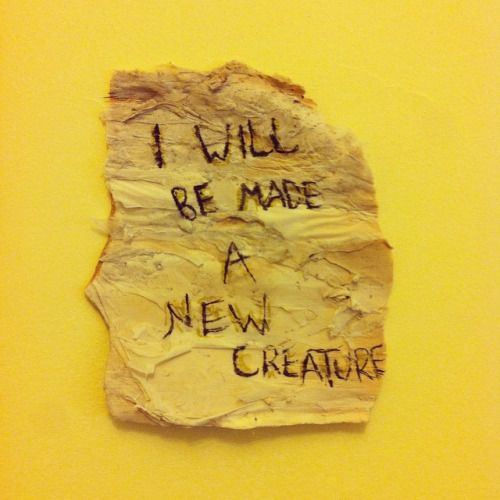 emptyheartsonfire:  tmg on paper bark