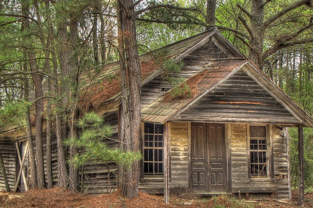 Abandoned and forgotten school house in South Carolina