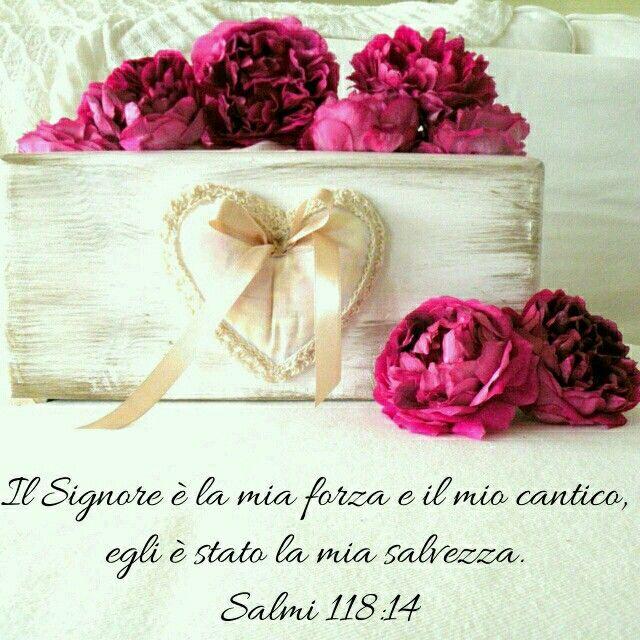 Salmi 118:14