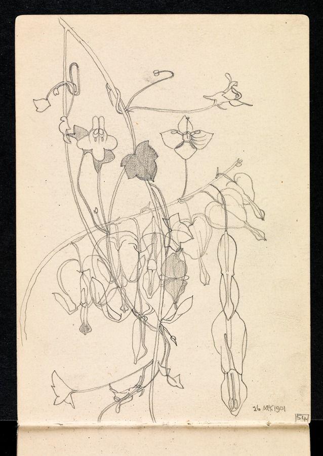 Charles Rennie mackintosh Hunterian Art Gallery Mackintosh collections: GLAHA 53013/37