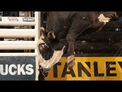 TOP BULL: Mick E Mouse puts up 46.75 bull score (PBR) - Published on Feb 4, 2014  Jordan Hupp bucks off Mick E Mouse in 3.25 seconds, earning a bull score of 46.75 points in the Championship round of the 2014 BFTS Sacramento Invitational in Sacramento, CA.