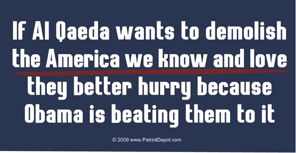 Google Image Result for http://www.whatsinyouremail.com/wp-photos/20100320-174019-1.jpg - via http://bit.ly/epinnerAmerica Weeping, Al Qaeda, Obama Flags, Chicken Coops, Filthy Politics, Politics Quotes, So True, Patriots, Funny Bumper Stickers