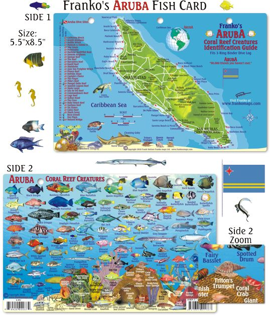 17 best ideas about map of aruba on pinterest eagle Fishing in aruba