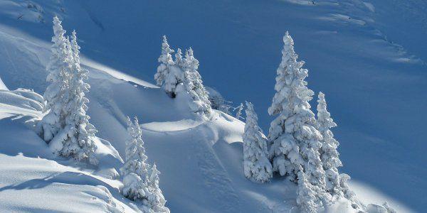 Importantes chutes de neige en montagne, Météo France alerte sur un risque d'avalanches
