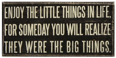 The little things...Words Of Wisdom, Life Quotes, Little Things, Remember This, Inspiration, Big Things, True Words, So True, True Stories