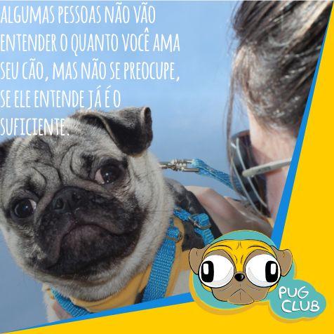 #pugclub #puglife #pug #puglove #clubpug #pugclubinternacional #pugs #pugsrequest #pugstuff #pugsrock #pugsofinstagran #pugsloversclub