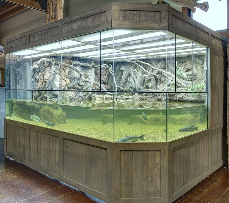 Special Designed 3D Aquarium with 3D Background fully encloses to house large species of Fish and Water Snakes.