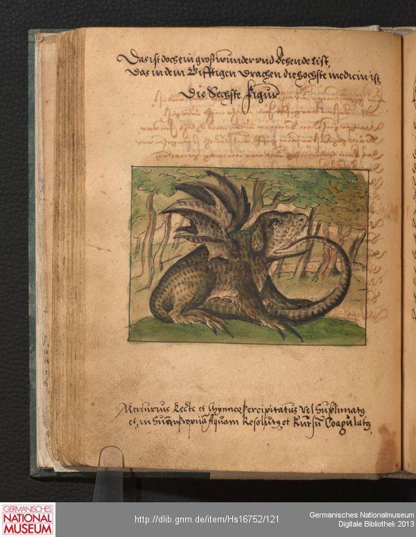 Hs 16752 Germanisches Nationalmuseum Drache Museum Strassburg Digitale Bibliothek