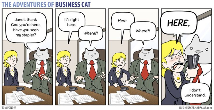 The Adventures of Business Cat — (via Business Cat - Lost and Found)