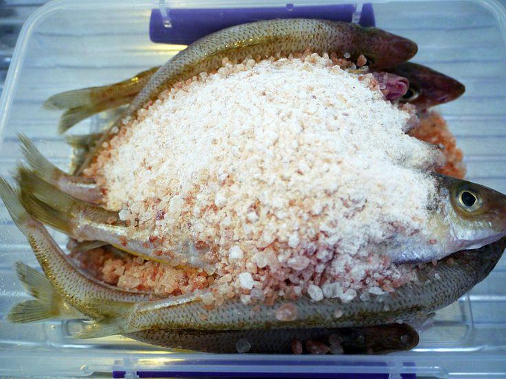 how to make padaek � lao fermented fish sauce recipe