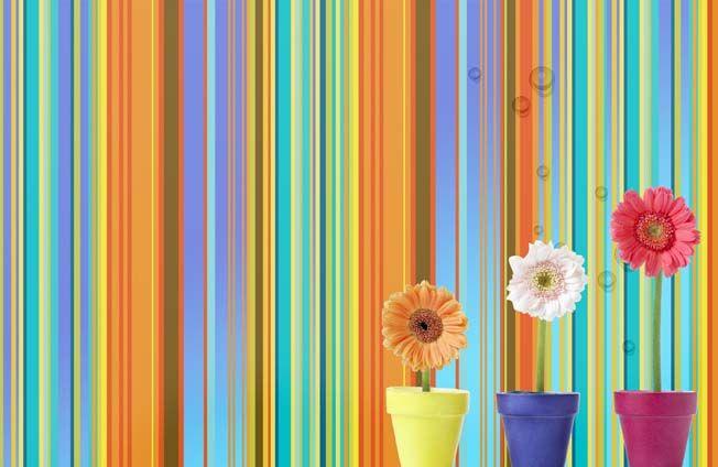 تنزيل تصاميم خلفيات متنوعه رووعه مفتوحه Beautiful Diversified Psd Packgounds تنزيل تصاميم خلفيات Psd Summer Backgrounds Web Template Design Easy Crafts
