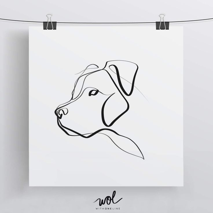 Line Art Limited : Best dog drawings ideas on pinterest how to draw