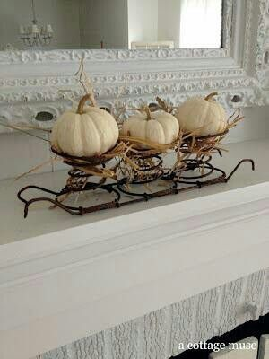 I have something similar - must remember to use for pumpkins!