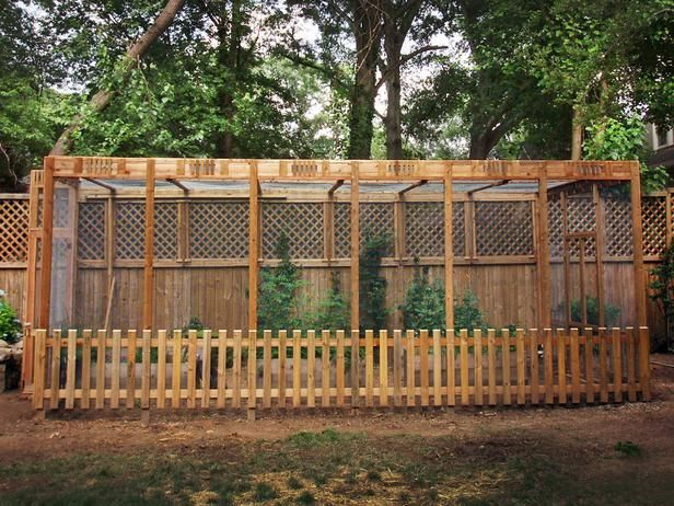 Insect Netting For Vegetable Gardens | Home and Garden Designs |Vegetable Garden Screen