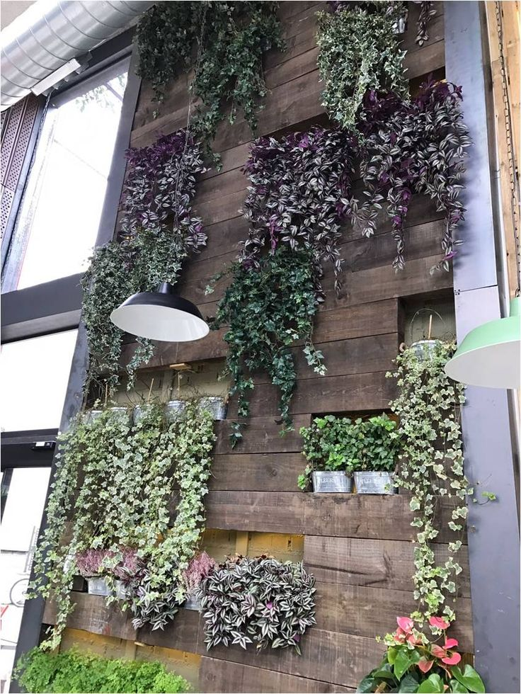 M s de 25 ideas incre bles sobre pared vegetal en for Paredes vegetales verticales