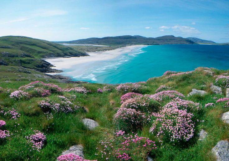 Traigh Eais Beach ༺✿  Isle of Barra, Scotland.