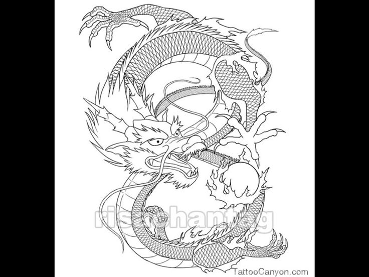 21 best chinese zodiac tattoos images on pinterest constellation tattoos zodiac tattoos and. Black Bedroom Furniture Sets. Home Design Ideas