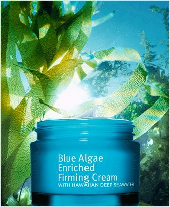 Grassroots Research Labs - Blue Algae * A great inexpensive antioxident cream made by Este Lauder who makes La Mer & Clinique ! on sale at Kohls now
