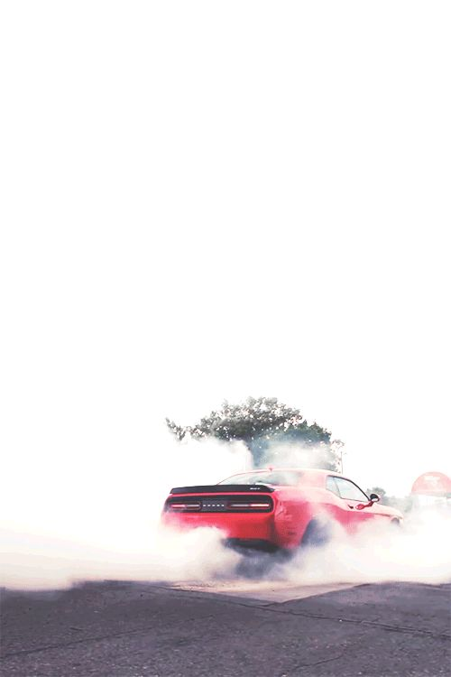 GIF: Dodge Challenger SRT Hellcat Dodge Challenger SRT Hellcat burn tires. (reblogged from cargifs)