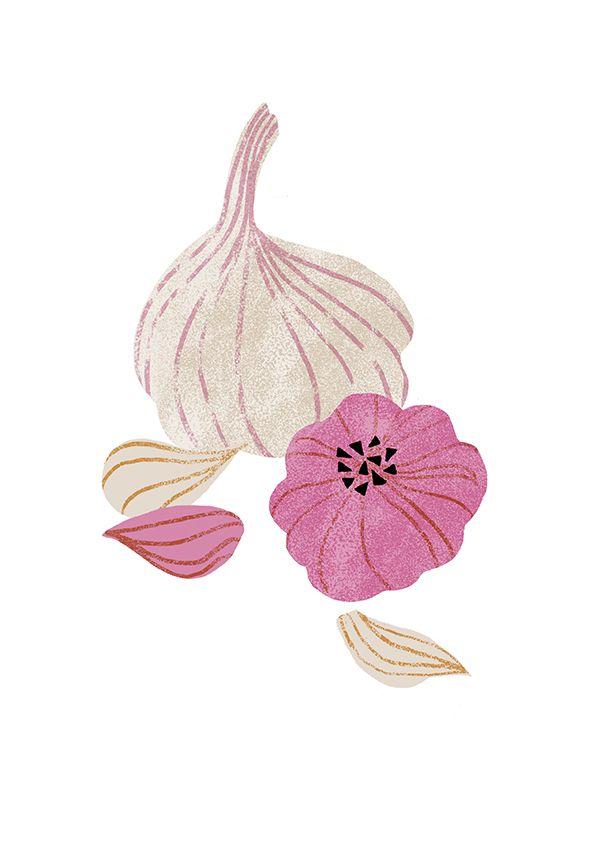 'Garlic' by Nanna Prieler
