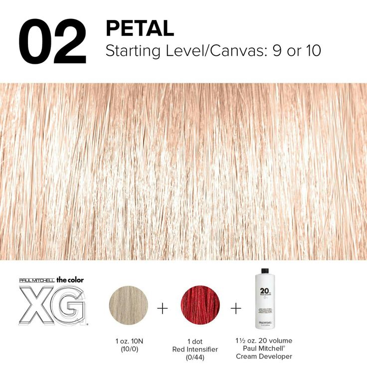Color XG formula created by Paul Mitchell