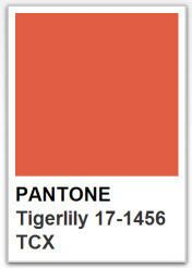 PANTONE 17 1456 Tigerlily / Color of the year 2004