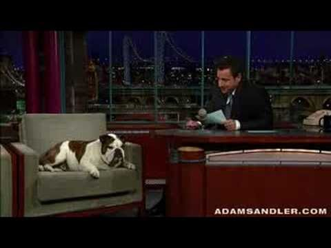 Adam Sandler hosts the Letterman show - YouTube