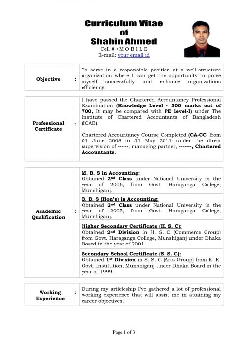 how to do a proper curriculum vitae project manager resume pdf